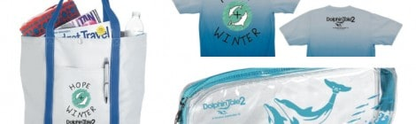 Amazing Dolphin Tale 2 Giveaway