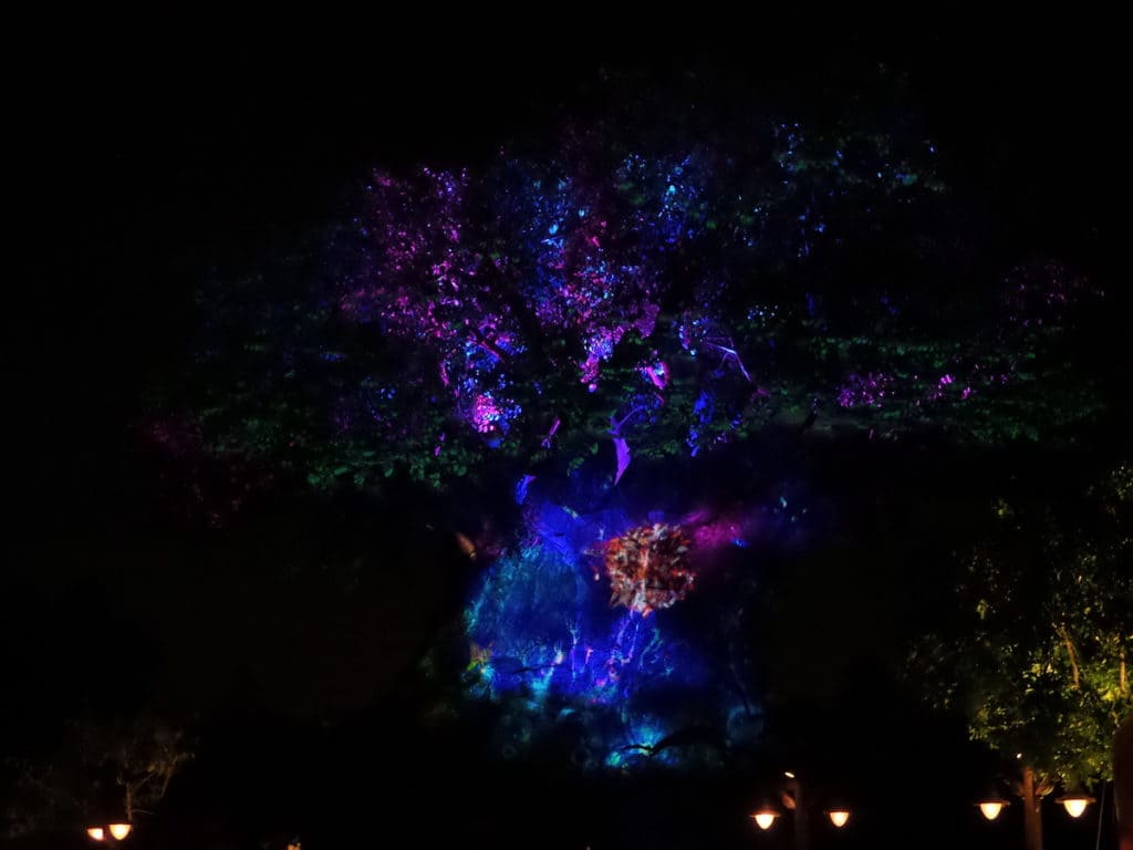 Tree of Life night time show
