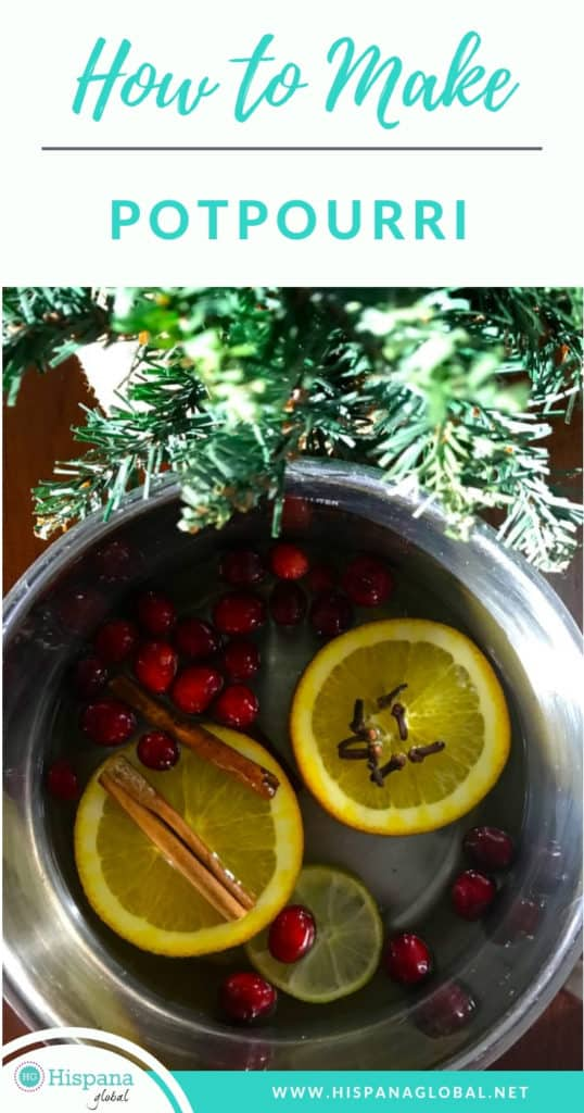 Here's how to make your own potpourri for the holidays with delicious smelling spices. Your home will smell delicious without using any artificial scents!