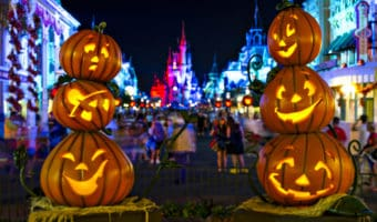 Fall is one of the best times of the year to visit Walt Disney World Resort. Here are the top reasons, including Mickey's Not So Scary Halloween Party and the Epcot International Food and Wine Festival.